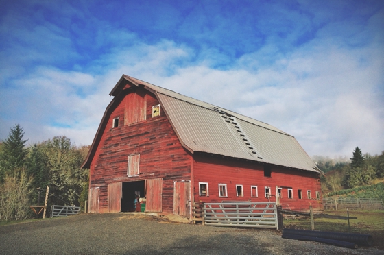 The Big, Red Barn